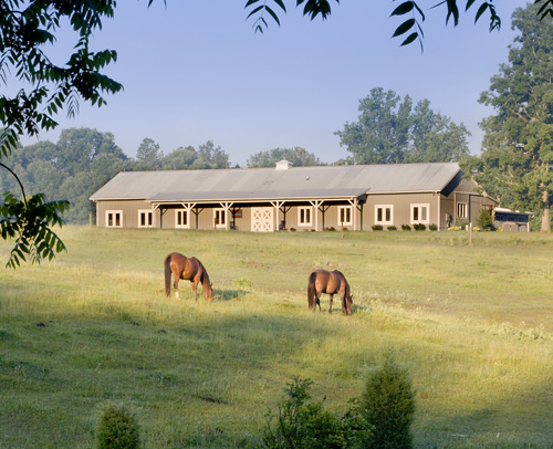 Horse Pond at Stubben headquarters